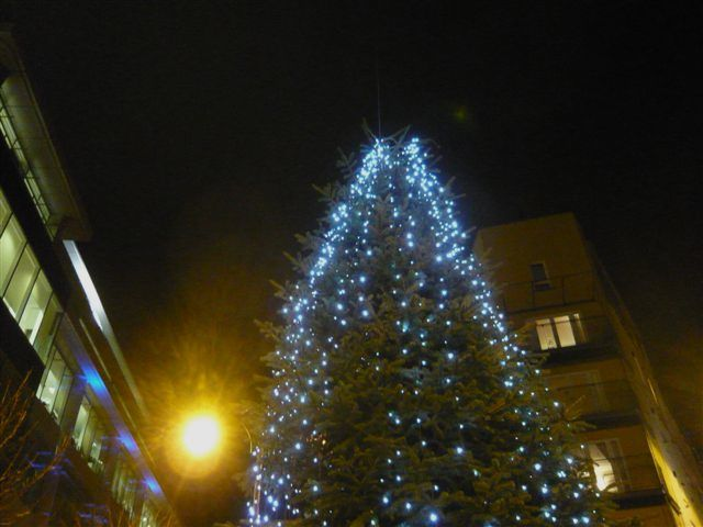 No Christmas decorations for Tollcross?